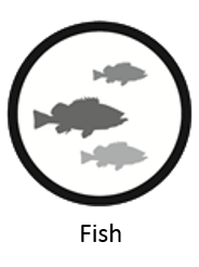 fish_icon