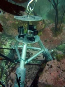 Video lander underwater sitting on seafloor.