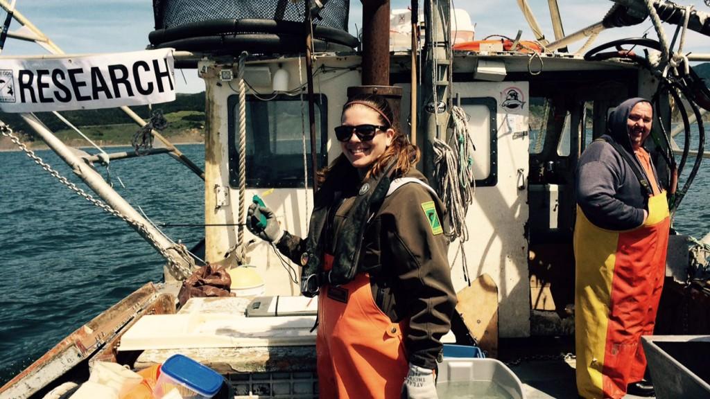 longline survey research in Redfish Rocks Marine Reserve