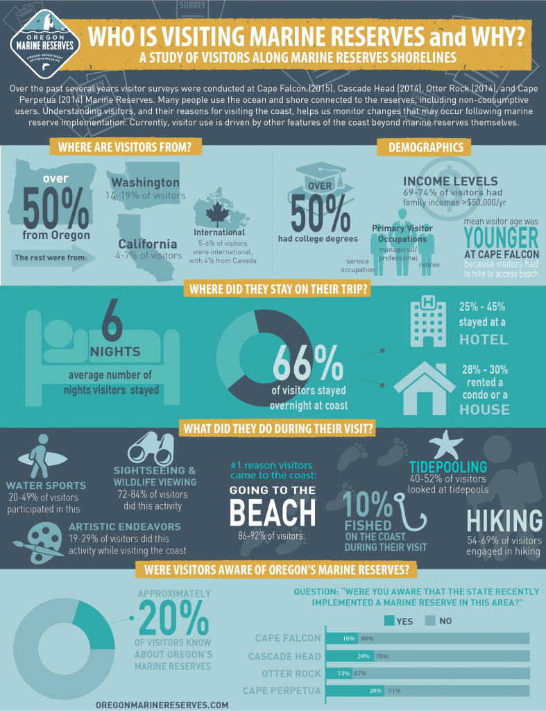 Visitor Survey Infographic