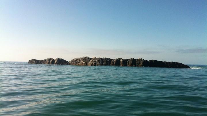 Otter Rock Marine Reserve