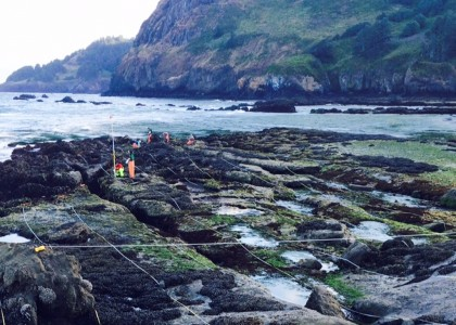Scientists conducting rocky intertidal monitoring