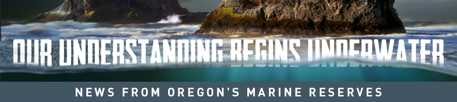 Marine Reserves News (banner)