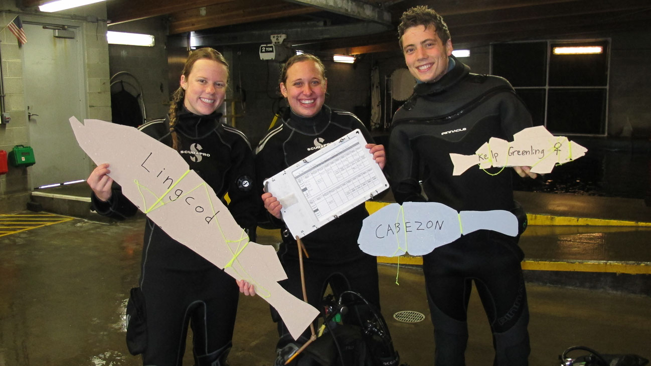 Research divers train on Oregon fish identification