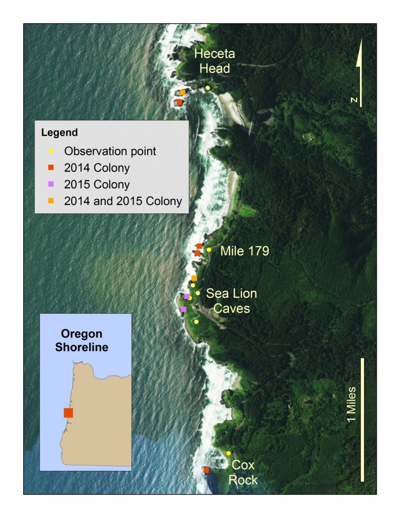 Seabird Colony Locations