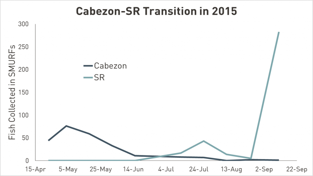 Cabezon data