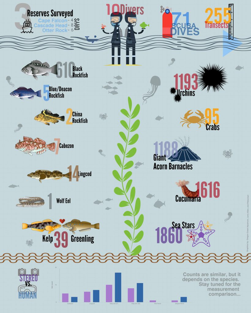 Diver InfoGraphic