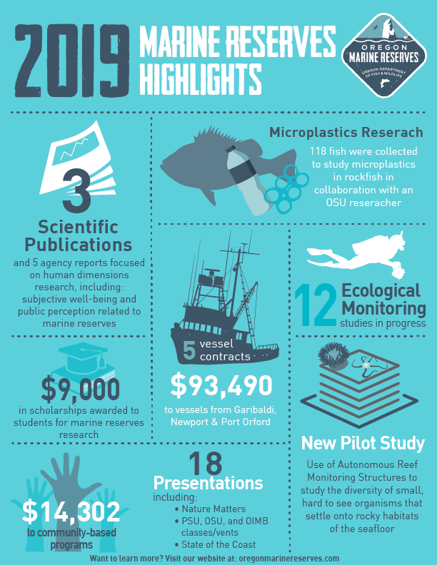 Annual highlights infographic