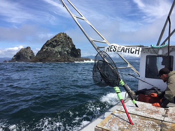Research at Orford Reef aboard the F/V Top Gun in 2017